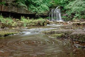 Картинки Англия Водопады West Burton Falls Природа