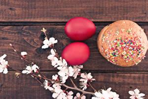 Фотография Праздники Пасха Выпечка Кулич Яйца Ветка Красный Две
