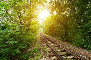 Фотографии Железные дороги Дерево Лучи света Природа