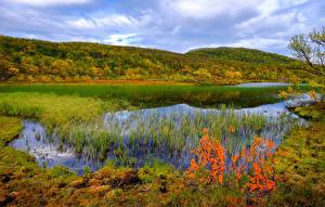 Обои Норвегия Пейзаж Реки Осень Трава Aunfjellet Природа фото