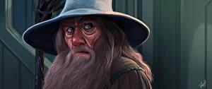 Обои Властелин колец Рисованные Лицо Взгляд Шляпа Борода Gandalf Фильмы фото
