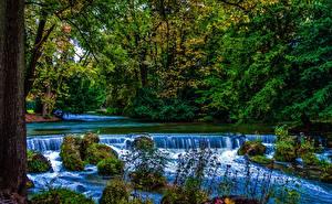 Картинки Германия Парки Водопады Мюнхен Бавария Деревья Мох Природа