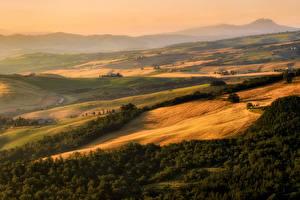 Картинки Италия Пейзаж Поля Луга Леса Тоскана Природа