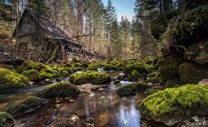 Обои Австрия Леса Дома Камни Мох Ручеек Природа