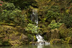 Фотография США Парки Водопады Камень Мох Portland Japanese Gardens Oregon Природа