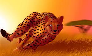 Картинки Большие кошки Гепарды Рисованные Бег Трава