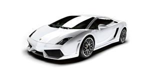 Картинки Lamborghini Белый Дорогие Gallardo Машины