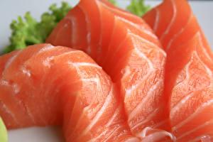 Картинка Морепродукты Рыба Вблизи Пища