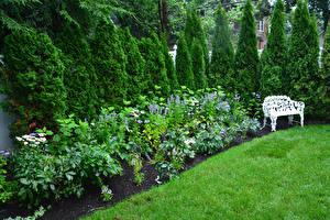 Фотография Штаты Парки Кустов Скамейка Трава Ель Detroit Garden Природа