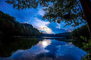 Картинка Германия Пейзаж Реки Леса Небо Майнц Ночь Ветки Природа
