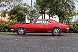 Обои Chevrolet Ретро Красный Сбоку 1968 Camaro Z28 RS Автомобили фото