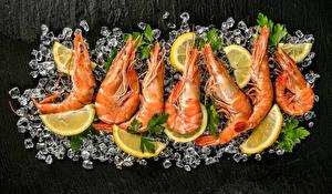 Картинки Морепродукты Креветки Лимоны Лед