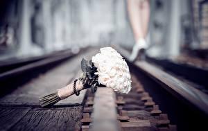 Фотография Букет Железные дороги Рельсах Цветы