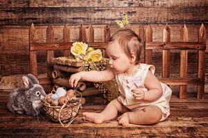 Картинки Пасха Кролики Розы Младенец Яйца Корзина Ребёнок