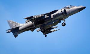 Обои Самолеты Истребители AV-8B Harriers Авиация фото