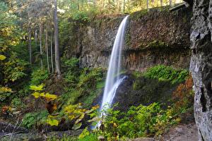 Фото США Парк Водопады Утес Silver Falls State Park Природа