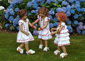 Фото Парки Гортензия Куклы Девочки Три Платье Grugapark Essen Природа