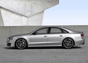Обои Audi Серебристый Сбоку 2015 S8 plus D4 Автомобили фото