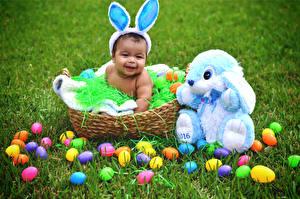Фото Кролики Пасха Младенец Корзинка Яйцами Траве Ребёнок