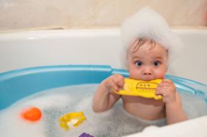 Фотографии Игрушки Грудной ребёнок Ванная Взгляд Пеной ребёнок