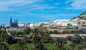 Картинка Испания Дома Небо Канарские острова Пальм Aruca Gran Canaria Природа