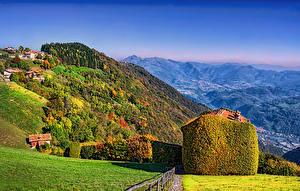 Обои Италия Пейзаж Горы Леса Осень Трава Aviatico Lombardy Природа фото