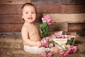Картинки Роза Грудной ребёнок Девочка Дети