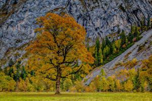 Картинка Австрия Горы Осенние Дерево HDRI Альпы Karwendel Природа