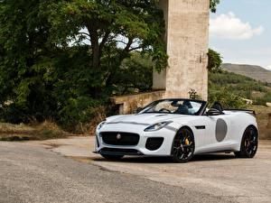 Картинка Jaguar Белые Кабриолета 2014 F-Type Project 7 UK-spec авто