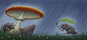 Фотография Мыши Рисованные Грибы Дождь