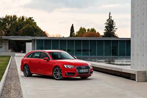 Фотография Audi Красная Универсал 2015 A4 Avant quattro машина
