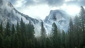 Обои США Горы Калифорния Йосемити Невада Деревья Sierra Природа фото