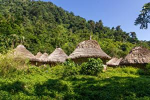 Картинки Тропики Здания Колумбия Деревня Дерево Kogi Village Города