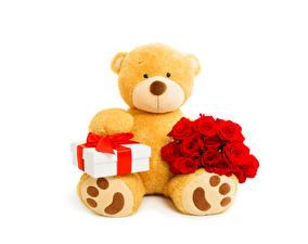 Фото Игрушка Праздники Плюшевый мишка Букеты Роза Подарки Красный Белом фоне