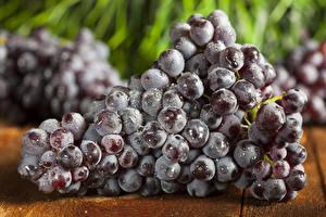Картинка Виноград Крупным планом Еда