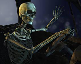 Картинки Черепа Скелет