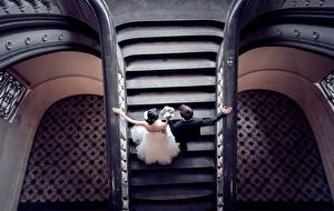 Картинка Свадьба Лестница Невеста Жених