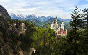 Картинки Германия Замки Гора Нойшванштайн Бавария Деревья Города Природа