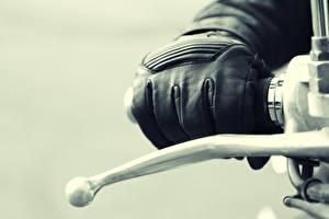 Картинки Крупным планом Макро Перчатки Мотоциклы