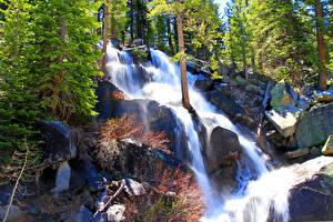 Фотографии Штаты Парки Водопады Камень Йосемити Деревья Природа