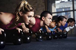 Фото Фитнес Гантелями Отжимание Физическое упражнение Спортивная Молодые женщины Спорт Девушки