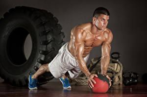 Обои Мужчины Бодибилдинг Мяч Мышцы Тренировка