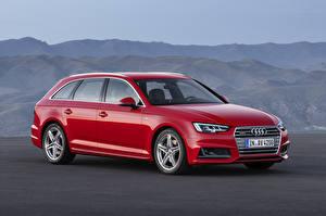 Обои Audi Красные Универсал 2015 A4 Avant TDI quattro S line B9