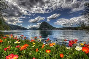 Картинка Швейцария Небо Пейзаж Горы Маки Озеро Облака HDRI Lugano Природа