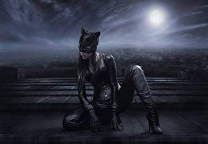 Картинка Холли Берри Женщина-кошка герой Женщина-кошка Луны 2004 Фильмы Знаменитости Фэнтези