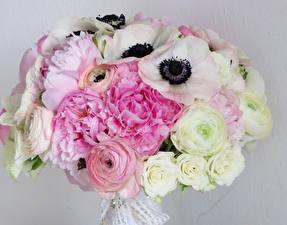 Фотографии Букеты Пионы Розы Лютик Ветреница Цветы