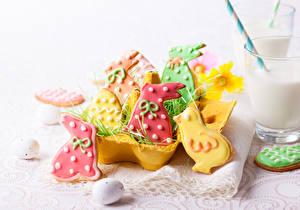 Фотография Выпечка Печенье Пасха Кролики Птенец курицы Дизайн Еда