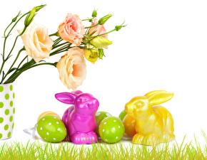 Картинка Эустома Пасха Кролики Бутон Яиц цветок