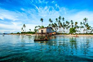 Обои Малайзия Тропики Побережье Пальмы Maiga Island Природа фото