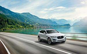 Фотография Горы Jaguar Белая Движение 2015 F-Pace S автомобиль